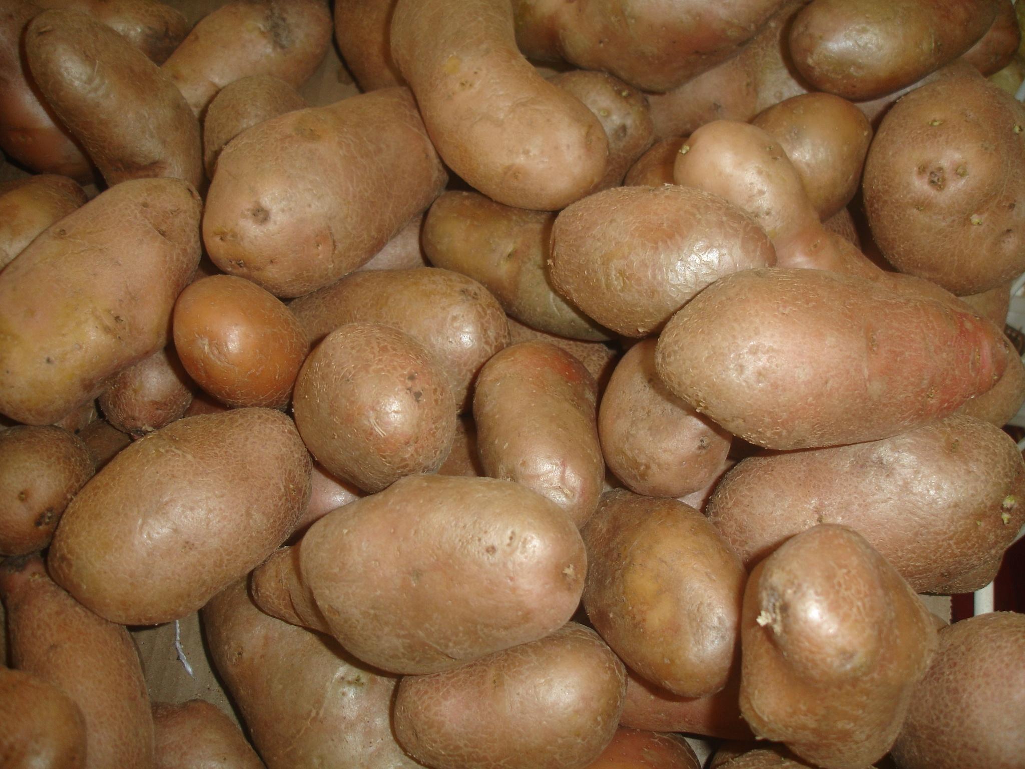 hur mycket väger en potatis